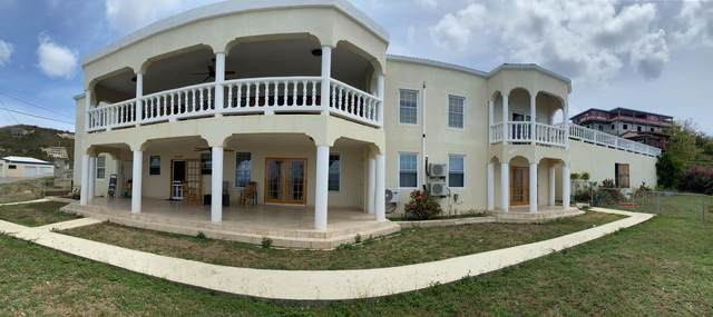 15-16 Frenchman Bay Fb, St. Thomas, VI 00802 (MLS #21-560) :: Hanley Team | Farchette & Hanley Real Estate