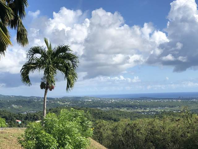 81-C Belvedere Nb, St. Croix, VI 00820 (MLS #21-564) :: Coldwell Banker Stout Realty