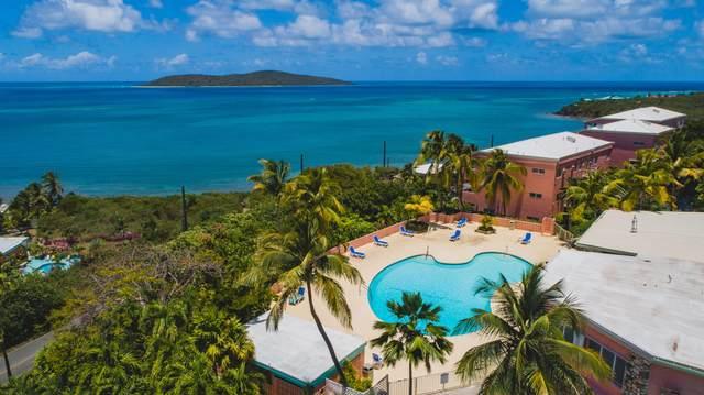 1 Coakley Bay Eb, St. Croix, VI 00820 (MLS #21-566) :: The Boulger Team @ Calabash Real Estate
