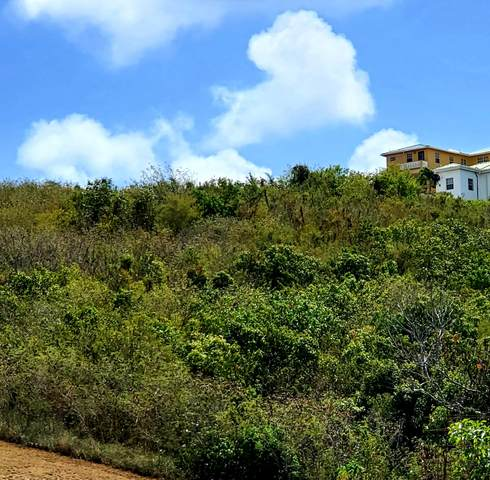 149 Bugby Hole Co, St. Croix, VI 00820 (MLS #21-567) :: Hanley Team | Farchette & Hanley Real Estate
