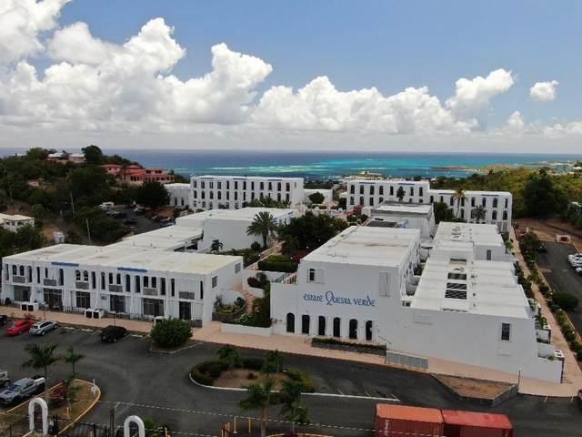 56 Hermon Hill Co, St. Croix, VI 00820 (MLS #21-576) :: Hanley Team | Farchette & Hanley Real Estate