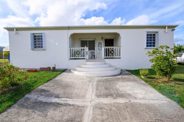 259 St. George Pr, St. Croix, VI 00840 (MLS #21-582) :: The Boulger Team @ Calabash Real Estate