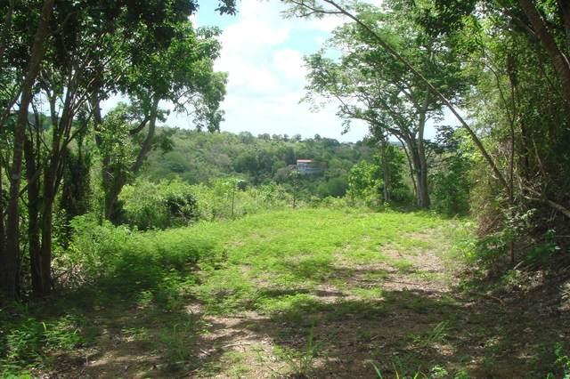 12 Little Fountain Ki, St. Croix, VI 00850 (MLS #21-588) :: The Boulger Team @ Calabash Real Estate