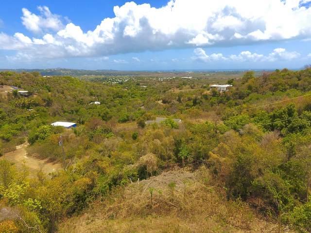 16 Little Fountain Ki, St. Croix, VI 00850 (MLS #21-590) :: The Boulger Team @ Calabash Real Estate