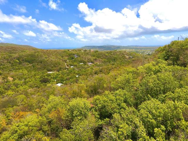 12,13,16 Little Fountain Ki, St. Croix, VI 00850 (MLS #21-594) :: Coldwell Banker Stout Realty