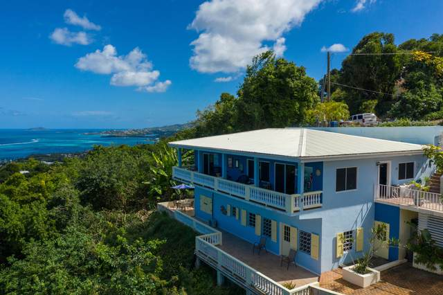 75 Little Princ Hil Co, St. Croix, VI 00820 (MLS #21-60) :: Hanley Team | Farchette & Hanley Real Estate
