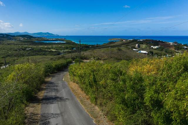 64 Green Cay Ea, St. Croix, VI 00820 (MLS #21-61) :: Hanley Team | Farchette & Hanley Real Estate