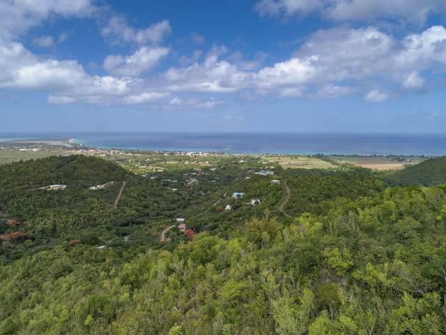 REM 6 Little La Grange We, St. Croix, VI 00840 (MLS #21-614) :: Hanley Team | Farchette & Hanley Real Estate