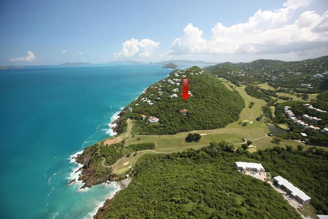 C-6-D Lovenlund Gns, St. Thomas, VI 00802 (MLS #21-618) :: Coldwell Banker Stout Realty