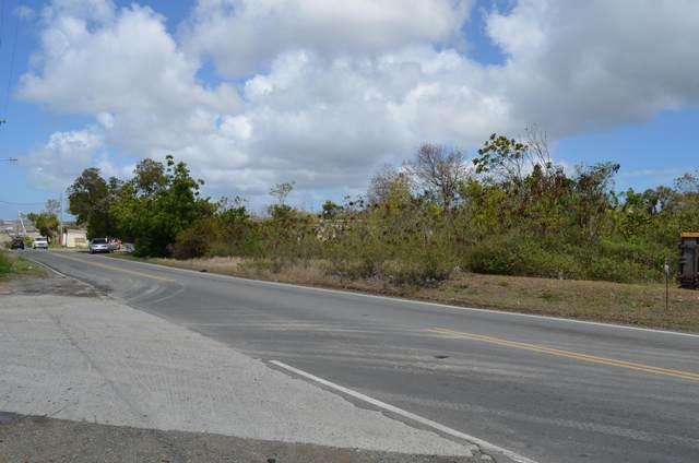 127 Castle Coakley Qu, St. Croix, VI 00820 (MLS #21-627) :: Hanley Team | Farchette & Hanley Real Estate