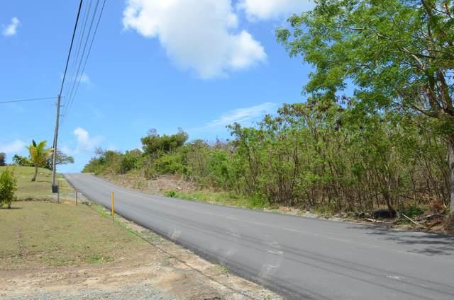 80 Castle Coakley Qu, St. Croix, VI 00820 (MLS #21-628) :: Hanley Team | Farchette & Hanley Real Estate