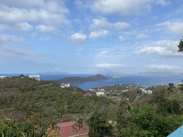 14-3 Anna's Retreat New, St. Thomas, VI 00802 (MLS #21-630) :: Coldwell Banker Stout Realty