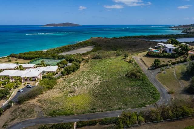 101-B Green Cay Ea, St. Croix, VI 00820 (MLS #21-636) :: Hanley Team | Farchette & Hanley Real Estate