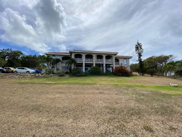 44 Green Cay Ea, St. Croix, VI 00820 (MLS #21-642) :: Hanley Team | Farchette & Hanley Real Estate