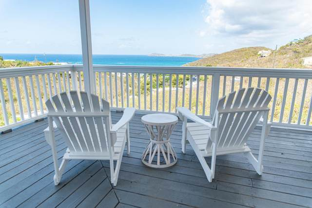 15-53 Frenchman Bay Fb, St. Thomas, VI 00802 (MLS #21-650) :: Hanley Team | Farchette & Hanley Real Estate