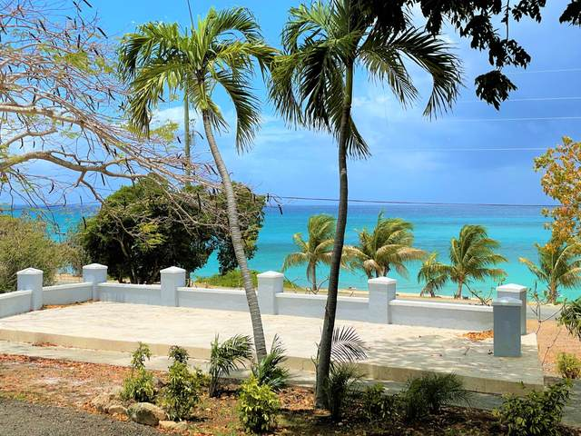 101 & 101A Two Brothers We, St. Croix, VI 00840 (MLS #21-651) :: Hanley Team | Farchette & Hanley Real Estate