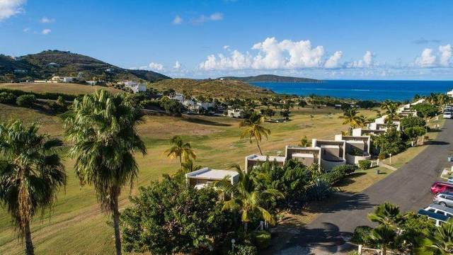 141 Teagues Bay Eb, St. Croix, VI 00820 (MLS #21-660) :: Hanley Team | Farchette & Hanley Real Estate