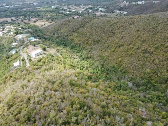131-A St. George Pr, St. Croix, VI 00840 (MLS #21-662) :: Hanley Team | Farchette & Hanley Real Estate