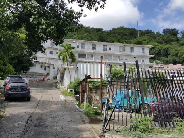 17 et al Contant Ss, St. Thomas, VI 00802 (MLS #21-67) :: Hanley Team | Farchette & Hanley Real Estate