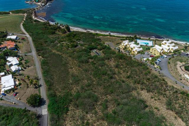 Rem 21etal Green Cay Ea, St. Croix, VI 00820 (MLS #21-672) :: Hanley Team | Farchette & Hanley Real Estate