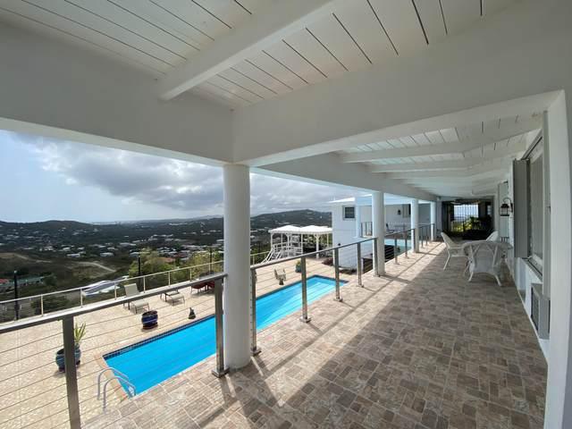 48 Hermon Hill Co, St. Croix, VI 00820 (MLS #21-681) :: Hanley Team | Farchette & Hanley Real Estate