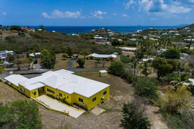 179 Judith's Fancy Qu, St. Croix, VI 00820 (MLS #21-684) :: Hanley Team | Farchette & Hanley Real Estate