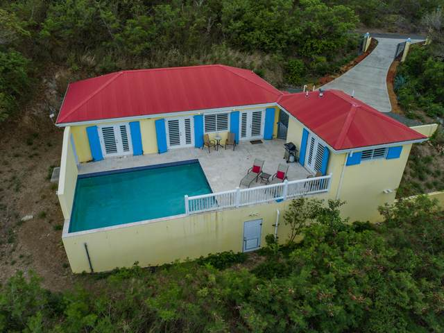 14B Catherine's Hope Eb, St. Croix, VI 00820 (MLS #21-698) :: Hanley Team | Farchette & Hanley Real Estate