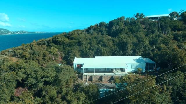 18 Water Island Ss, St. Thomas, VI 00802 (MLS #21-70) :: Hanley Team | Farchette & Hanley Real Estate