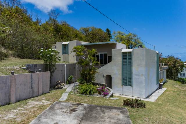 125 Mary's Fancy Qu, St. Croix, VI 00820 (MLS #21-702) :: Hanley Team | Farchette & Hanley Real Estate