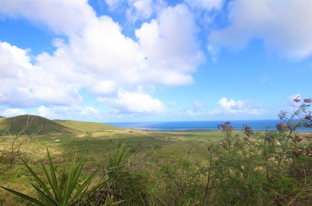 44 Grange Stock Est Co, St. Croix, VI 00820 (MLS #21-709) :: Hanley Team | Farchette & Hanley Real Estate