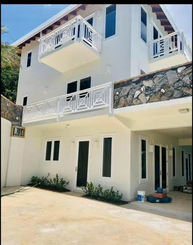2 K down Lerkenlund Gns, St. Thomas, VI 00802 (MLS #21-710) :: Coldwell Banker Stout Realty
