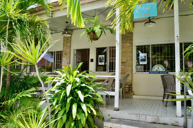 6 Company Street Ch, St. Croix, VI 00820 (MLS #21-712) :: Hanley Team | Farchette & Hanley Real Estate