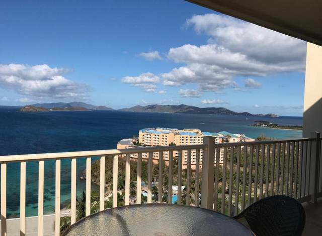 24 Smith Bay Ee, St. Thomas, VI 00802 (MLS #21-716) :: Hanley Team | Farchette & Hanley Real Estate