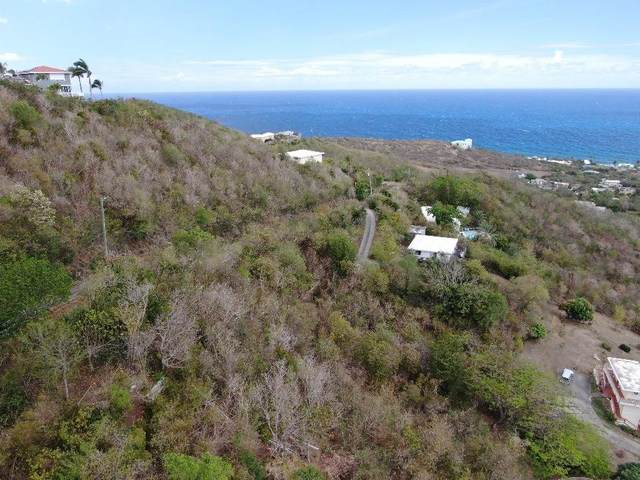 204 La Vallee Nb, St. Croix, VI 00840 (MLS #21-718) :: Hanley Team | Farchette & Hanley Real Estate