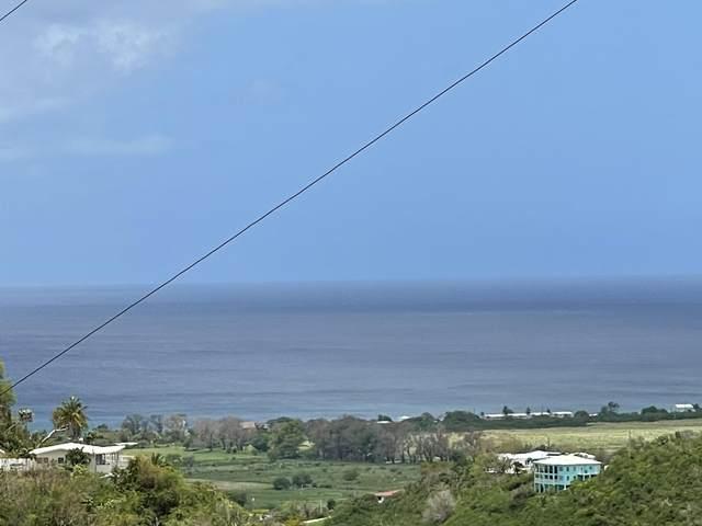 231D,G,H,I La Grange We, St. Croix, VI 00840 (MLS #21-733) :: The Boulger Team @ Calabash Real Estate