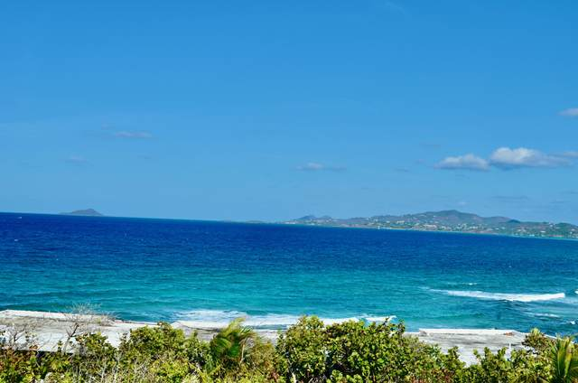 320 St. John Qu, St. Croix, VI 00820 (MLS #21-734) :: The Boulger Team @ Calabash Real Estate