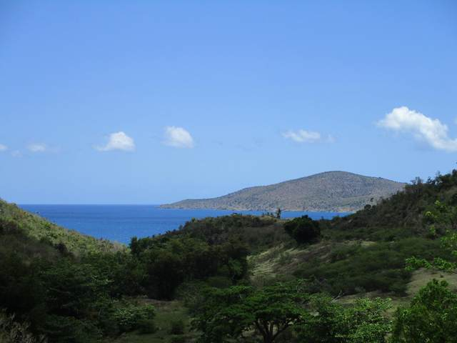 509M Lovenlund Gns, St. Thomas, VI 00802 (MLS #21-737) :: The Boulger Team @ Calabash Real Estate