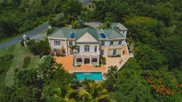 39 River Pr, St. Croix, VI 00840 (MLS #21-738) :: The Boulger Team @ Calabash Real Estate