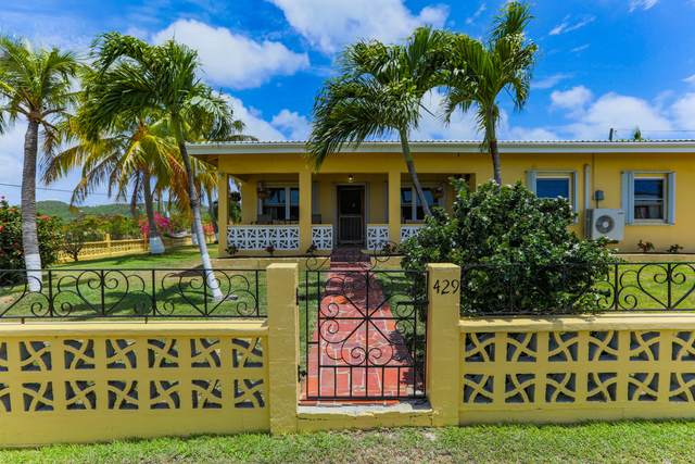 429 Union & Mt. Wash Ea, St. Croix, VI 00820 (MLS #21-743) :: Hanley Team | Farchette & Hanley Real Estate