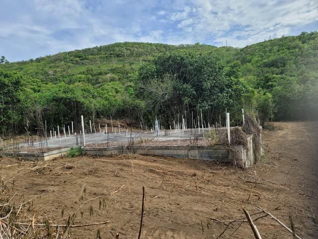 163 Union & Mt. Wash Ea, St. Croix, VI 00000 (MLS #21-746) :: The Boulger Team @ Calabash Real Estate