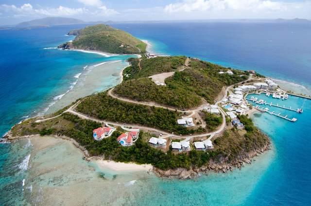 Villa #11 Scrub Island, British Virgin Islands, VI  (MLS #21-767) :: Coldwell Banker Stout Realty