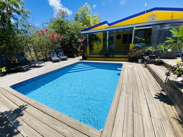 17-B Sally's Fancy Ea, St. Croix, VI 00820 (MLS #21-778) :: The Boulger Team @ Calabash Real Estate