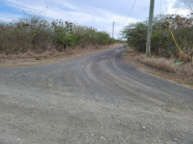 288 Enfield Green Pr, St. Croix, VI 00840 (MLS #21-795) :: The Boulger Team @ Calabash Real Estate