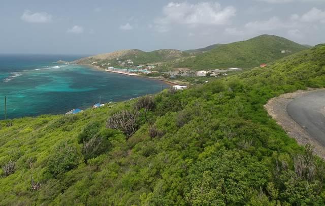 81 South Slob Eb, St. Croix, VI 00820 (MLS #21-802) :: Hanley Team | Farchette & Hanley Real Estate