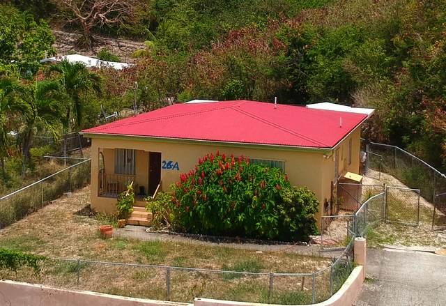 26-A St. John Qu, St. Croix, VI 00820 (MLS #21-803) :: Hanley Team | Farchette & Hanley Real Estate