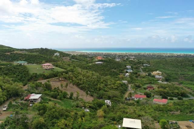 135 Frederikshaab We, St. Croix, VI 00840 (MLS #21-807) :: The Boulger Team @ Calabash Real Estate