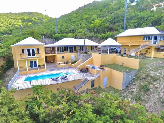 65 Hope & Carton H Eb, St. Croix, VI 00820 (MLS #21-812) :: Hanley Team | Farchette & Hanley Real Estate