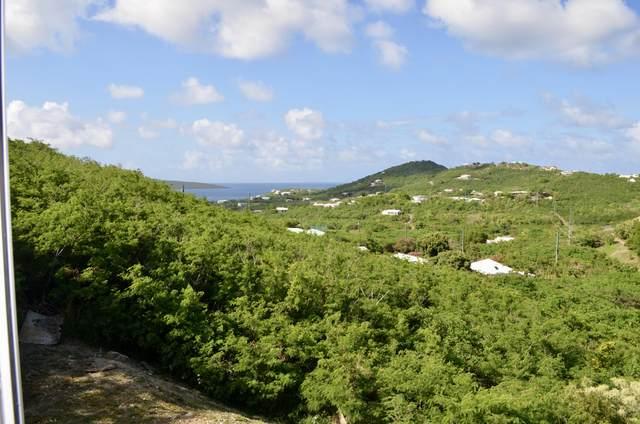 64 Hope & Carton H Eb, St. Croix, VI 00820 (MLS #21-813) :: Hanley Team | Farchette & Hanley Real Estate