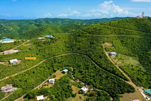 139 Frederikshaab We, St. Croix, VI 00840 (MLS #21-815) :: The Boulger Team @ Calabash Real Estate