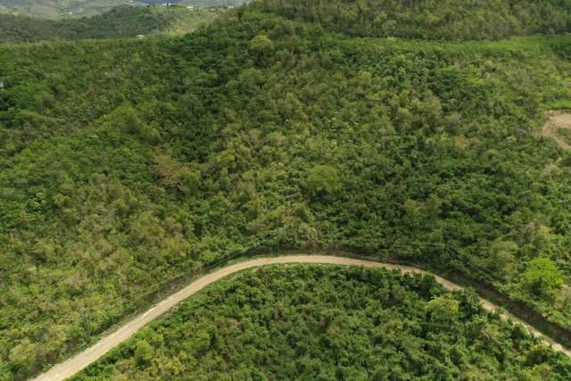 134 Frederikshaab We, St. Croix, VI 00840 (MLS #21-816) :: The Boulger Team @ Calabash Real Estate